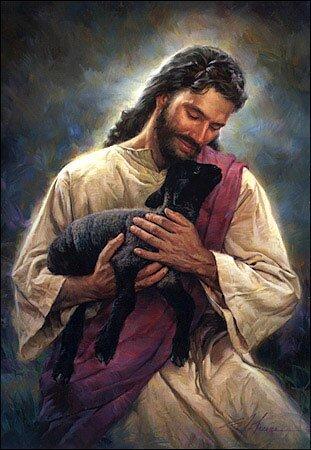 jezus goede herder schaap